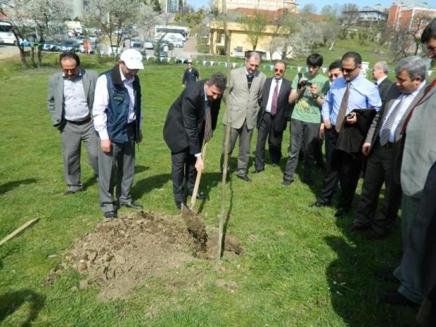 Sakarya Üniversitesi Kampüsü Ağaçlandırıldı