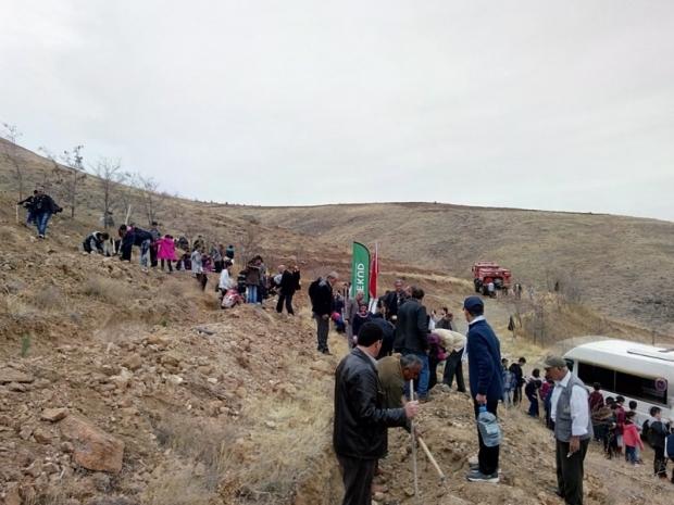 Yeşeren 5 Bin fidan Malatya'da Toprakla Buluştu