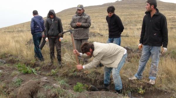 Sonbahar Ağaçlandırma Çalışmaları Konya'da Başladı