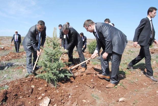 Sivas'ta Sonbahar Dikimleri Başladı
