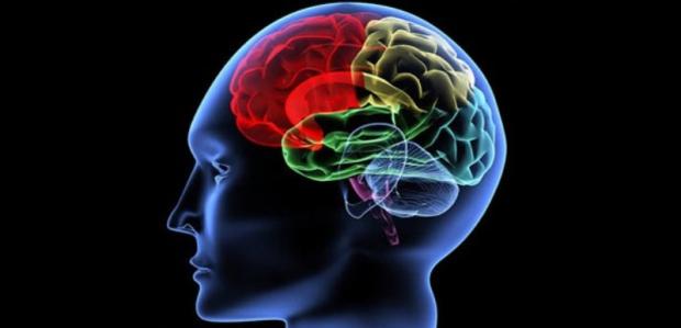Beynin Genç Kalabilmesi İçin Spor Şart