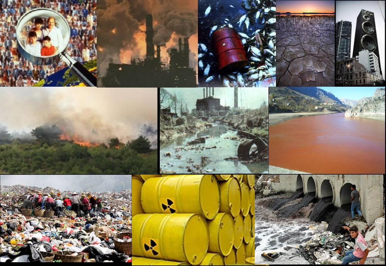 çevre Kirliliği çeküd çevre Kuruluşları Dayanışma Derneği