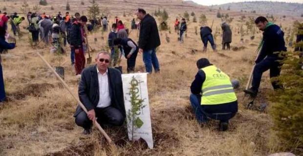 'Türkiye Yeşile Boyansın' Heyecanı Konya'da Yaşandı