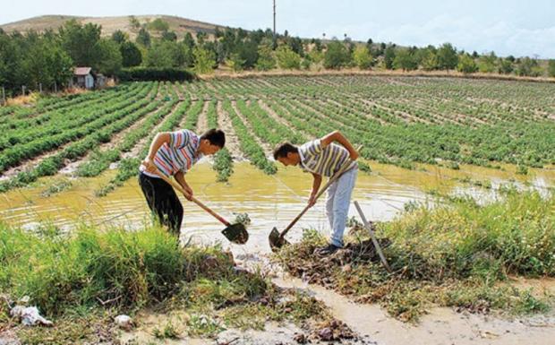 'Türkiye Tarımda Yağmur Suyuna Bağımlı'