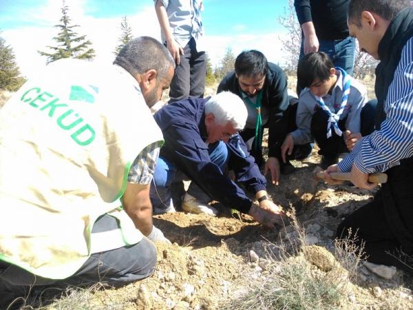 Karaman'da Ağaç Bayramı