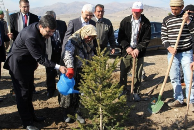Karataş Gölü Ağaçlandırma Çalışmaları İle Koruma Altında