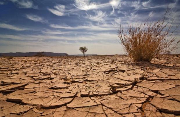 Küresel Isınmaya Karşı Her Yıl 483 Milyar Dolar
