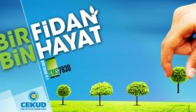 """""""Bir Fidan Bin Hayat"""""""