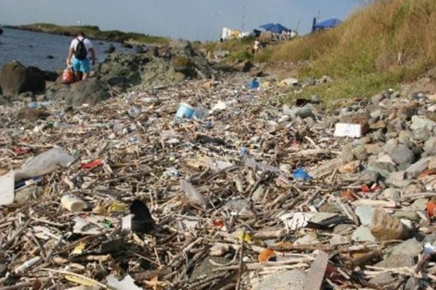 Kıyılarda Çevre Felaketi Yaşanıyor