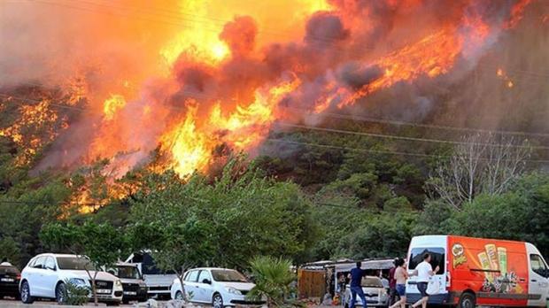 Orman Yangınları da Yanan Alan da Azaldı