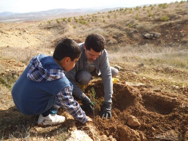 Elazığ'da 3000 Fidan  Toprakla Buluştu