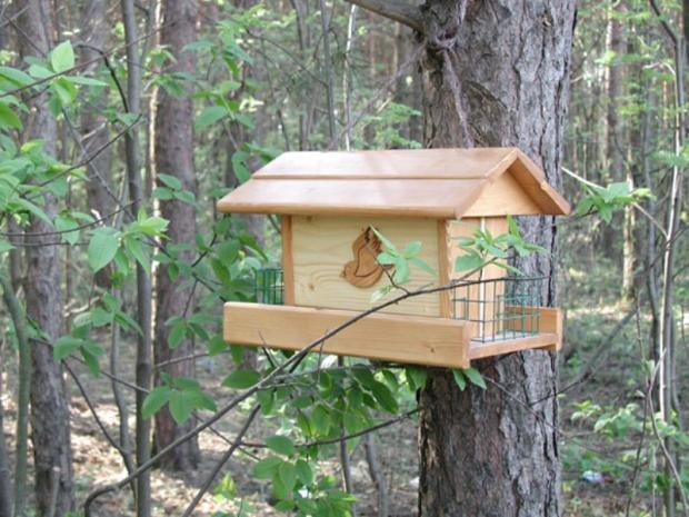 Ormanlar Kuş Yuvalarıyla Donatılıyor