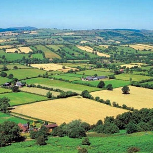 Tarımın Sorunları Gıda Fiyatları ile Su Yüzüne Sıkıyor