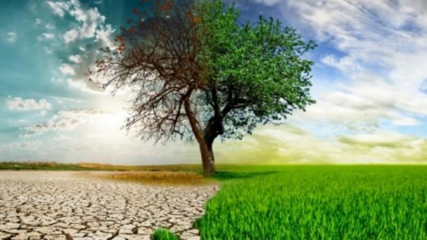 Özümüze Uygun İklimlere Dönmeliyiz