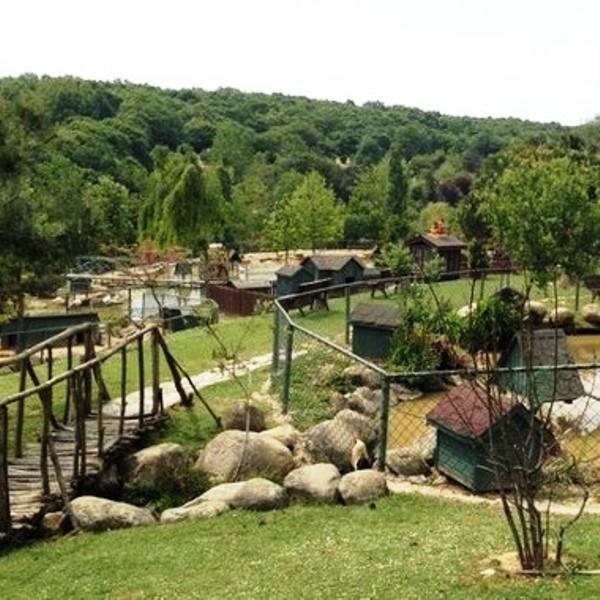 'Milli Parklara ve Tabiat Parklarına' Davet