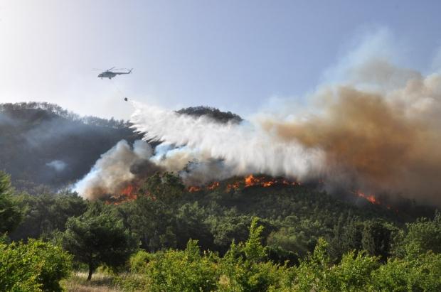 Orman Yangını İkaz Sistemi İsimli Android Uygulaması