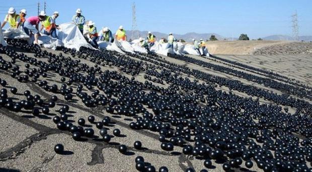 ABD'de Susuzluk Sorunu 96 Milyon Plastik Topla Çözüldü