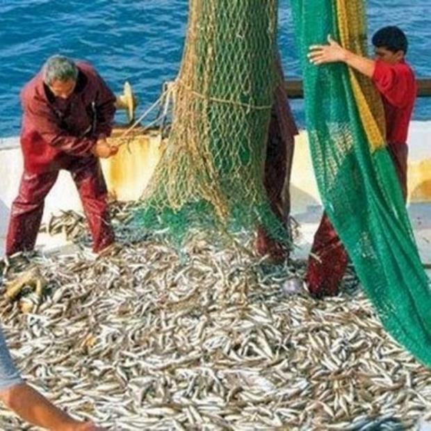 Balık Av Yasağında Geri Sayım Başladı