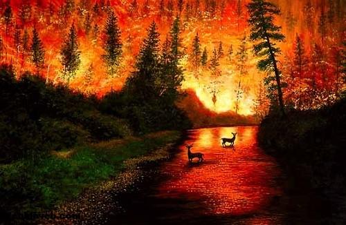 9 Ayda 2 Bin Hektar Orman Yandı