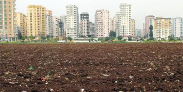 Nüfus Artarken Tarım Alanları Azalıyor