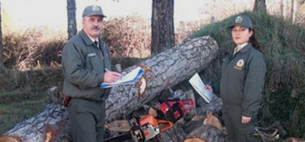 Orman Suçları 13 Yıl Öncesine Göre Yüzde 70 Oranında Azaldı