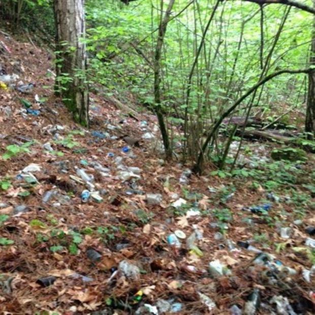 Milli Parklarda Aşırı Çöp Uyarısı