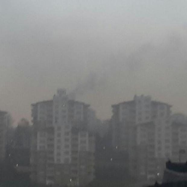 Hava Kirliliğinin Etkileri
