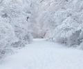 Yeraltı Suyunun Yoğun Olarak Kullanıldığı Konya Kapalı Havzası'nda Rezervlere Kar Dopingi