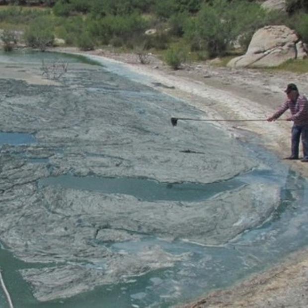 Su Kaynakları Tahrip Ediliyor