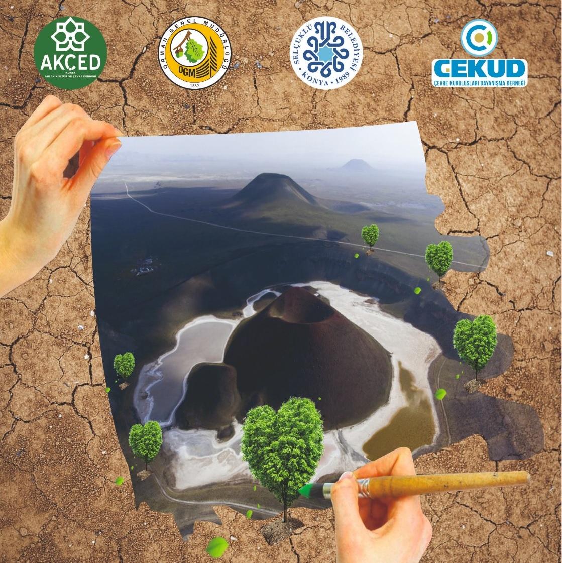 Konya Karapınar'da Binlerce Fidan Toprakla Buluşuyor