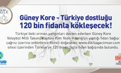 Güney Kore-Türkiye dostluğu  120 bin fidanla kökleşecek!